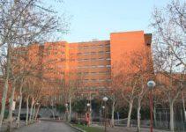 Ventajas de estudiar en Universidad Politécnica de Madrid