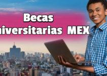 Las mejores becas universitarias de México